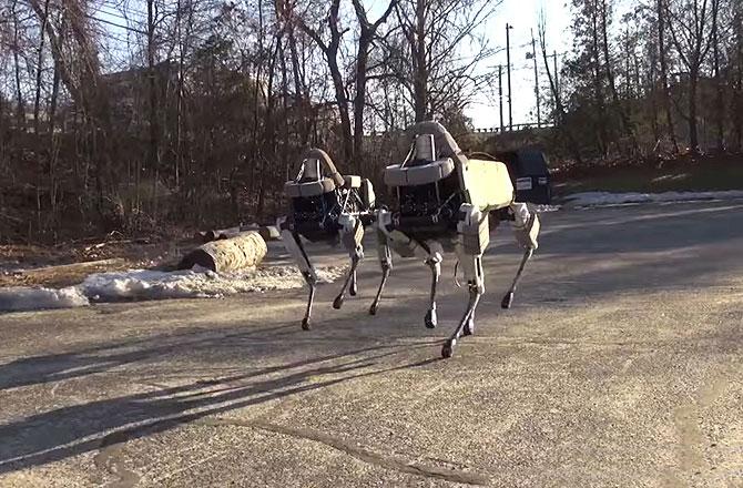 A fémvázas négylábú, mely nem fárad el, tud futni és lépcsőt is mászni – A Boston Dynamics legújabb teremtménye.